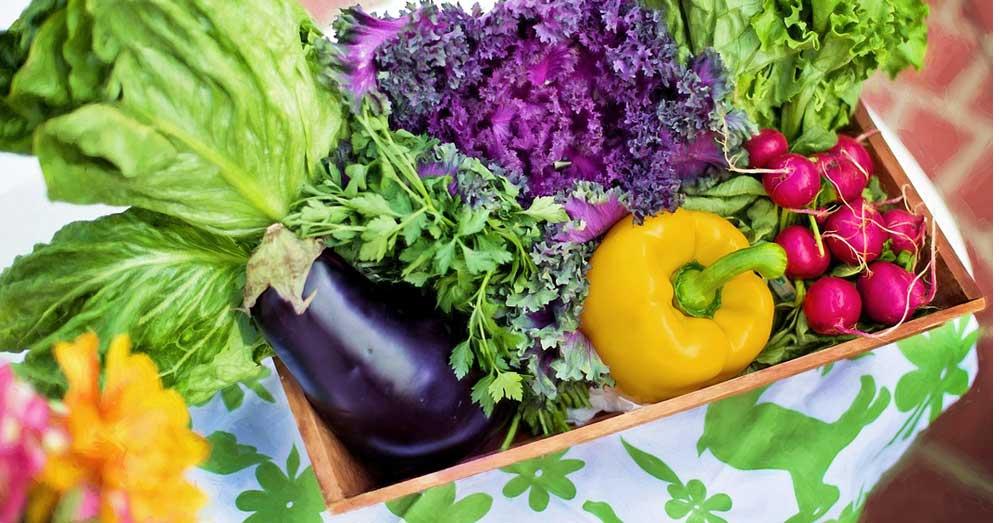 vitamini za oporovak kose