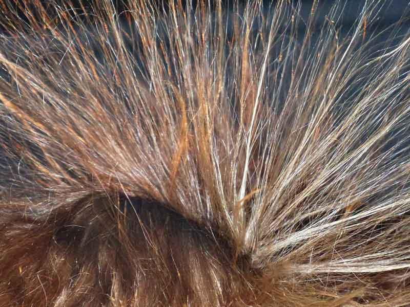 naelektrisana kosa posle peglanja