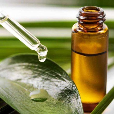 Prednosti koje ima brahmi ulje za kosu!