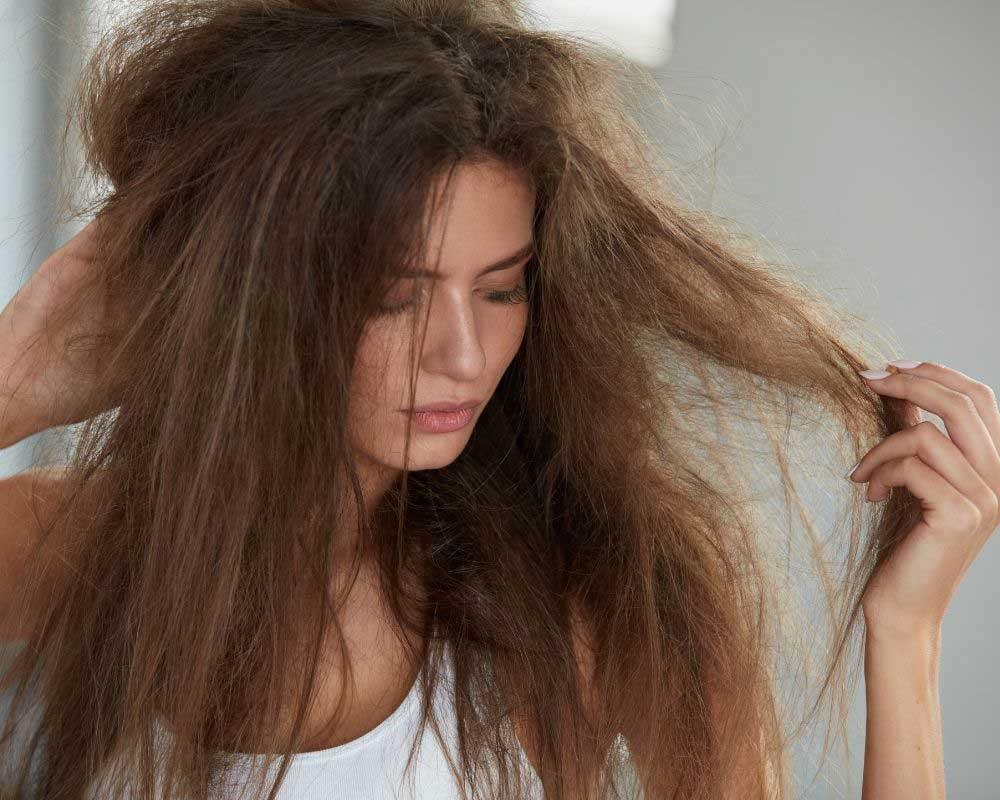 kako nahraniti suvu kosu