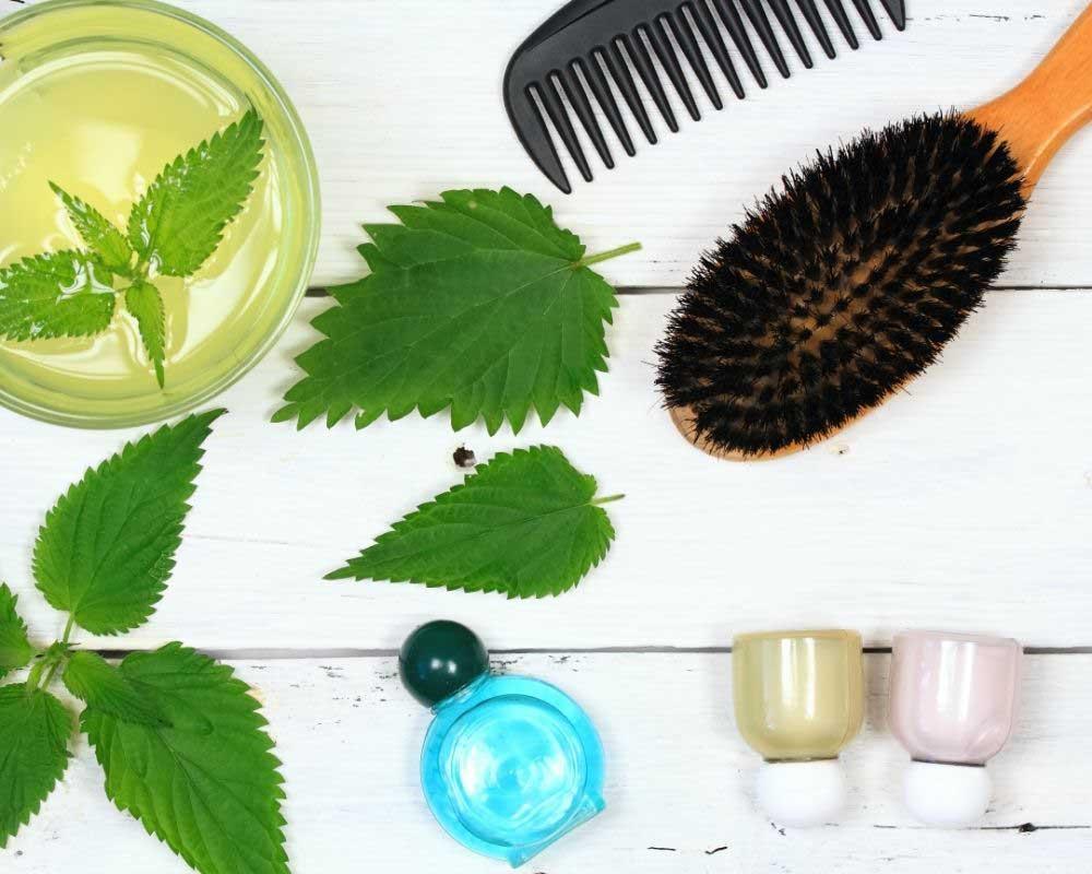 kopriva i biljke protiv opadanja kose