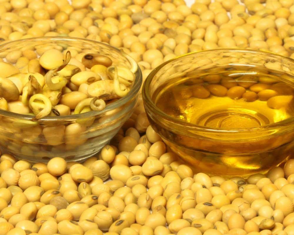 sojino ulje za rast kose